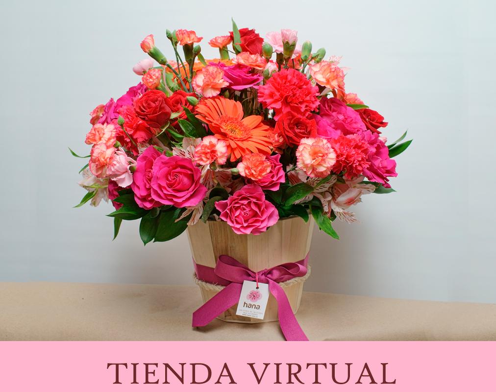 Tienda_Virtual